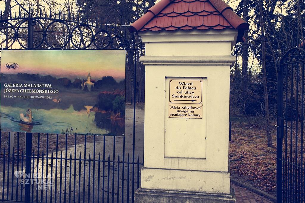 Pałac w Radziejowicach, architektura, Niezła Sztuka