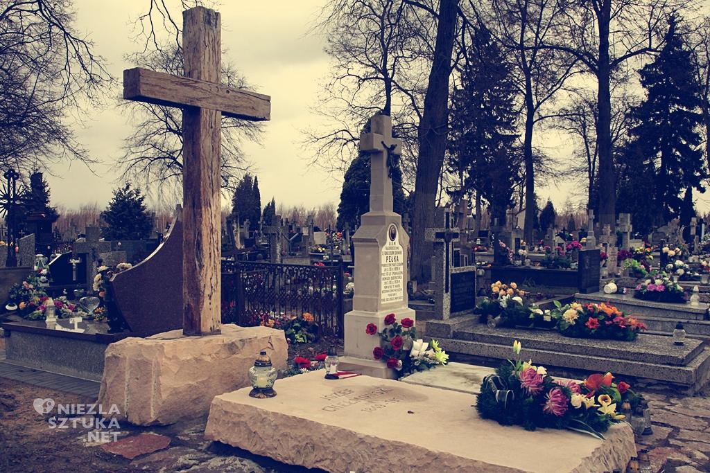 Grób J. Chełmońskiego na cmentarzu w Ojrzanowie