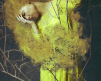 Josephine Cardin Of Desolate Amber