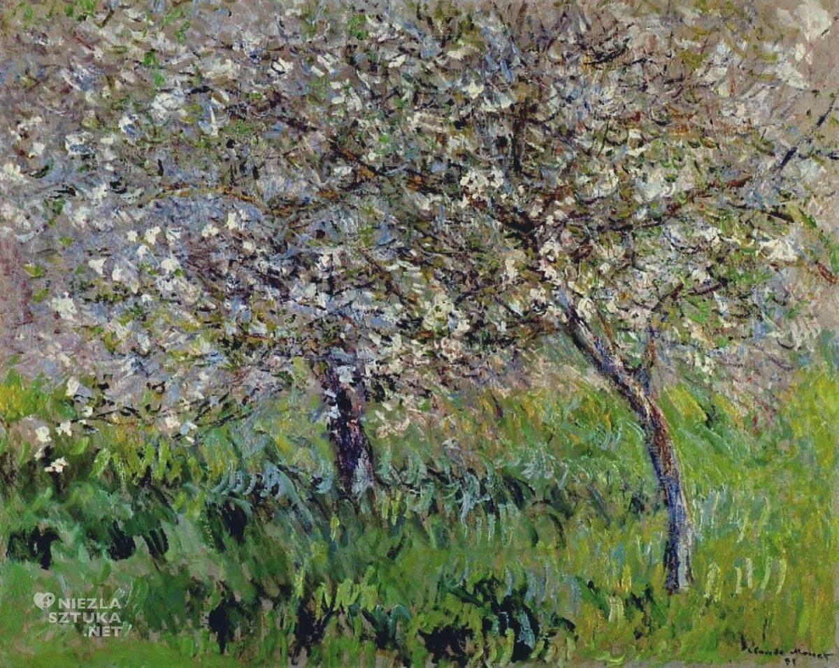 Kwitnące jabłonie w Giverny, 1900-01