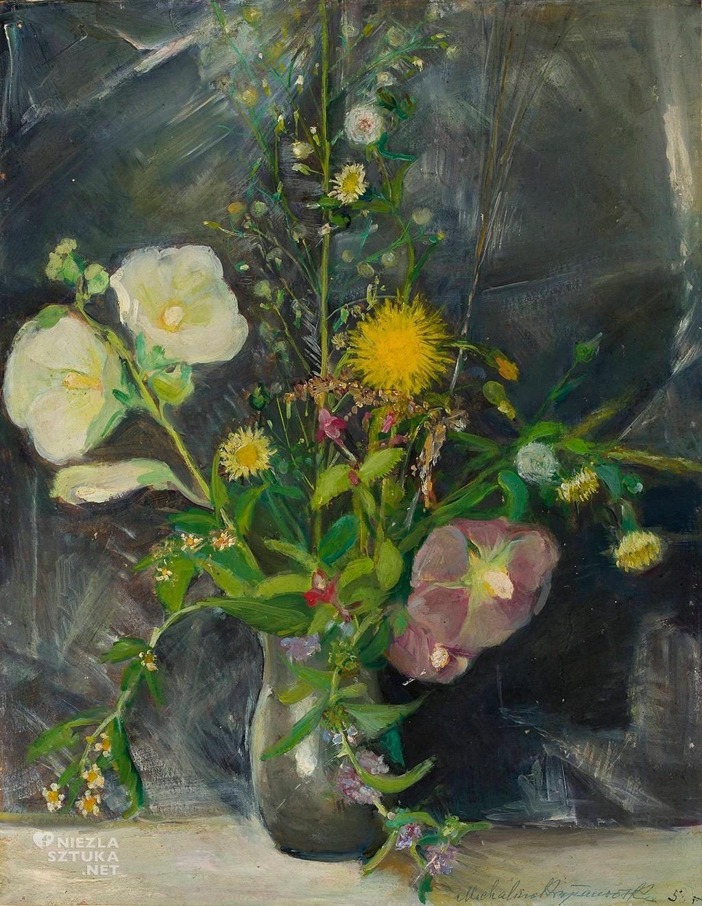 Michalina Krzyżanowska, Polne kwiaty, Muzeum Narodowe w Warszawie, Niezła sztuka