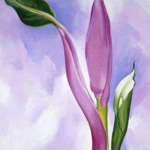 Georgia O'Keeffe,Pink Ornamental Banana, 1939, artsy,net