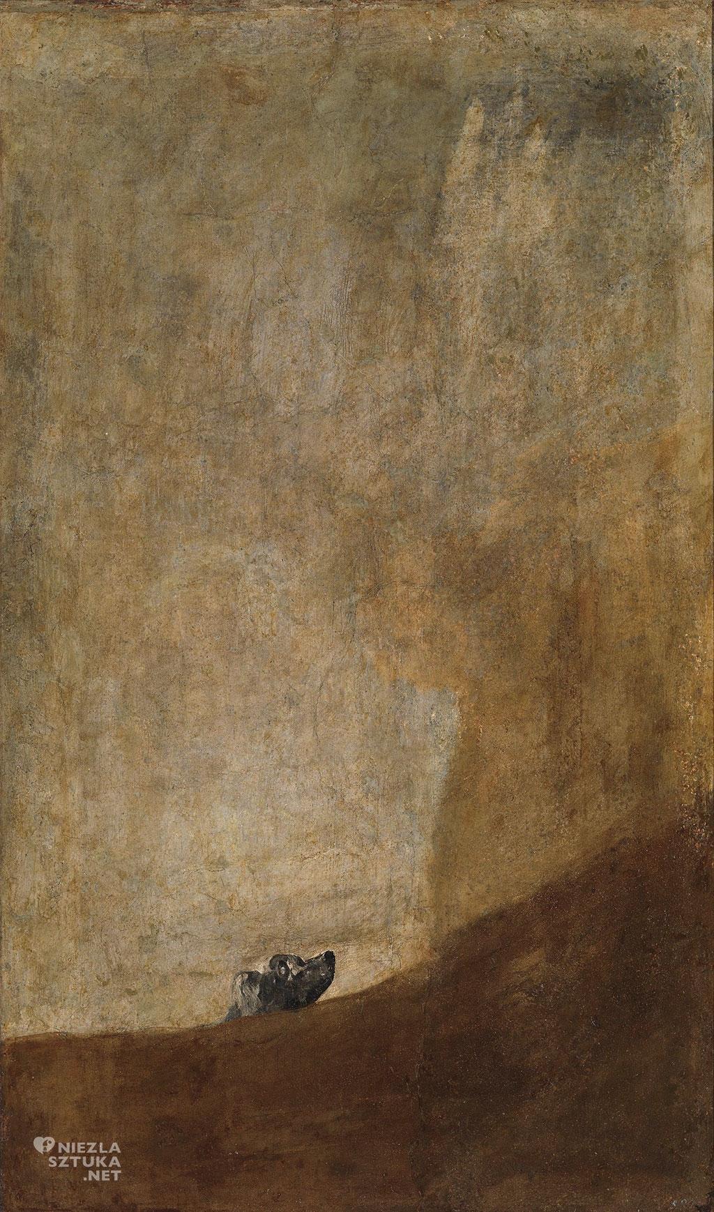 Goya Pies   Rok