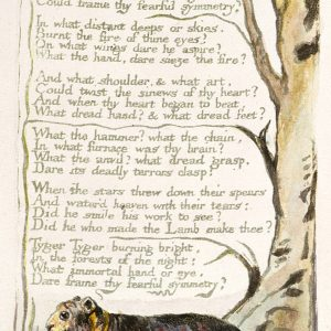 William Blake Tygrys | 1795, ilustrowany wiersz artysty, fot. Wikipedia