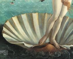 Sandro Botticelli Narodziny Wenus, detal | ok. 1485, 172,5 × 278,5 cm, tempera na płótnie, Galeria Uffizi, Florencja, Niezła sztuka