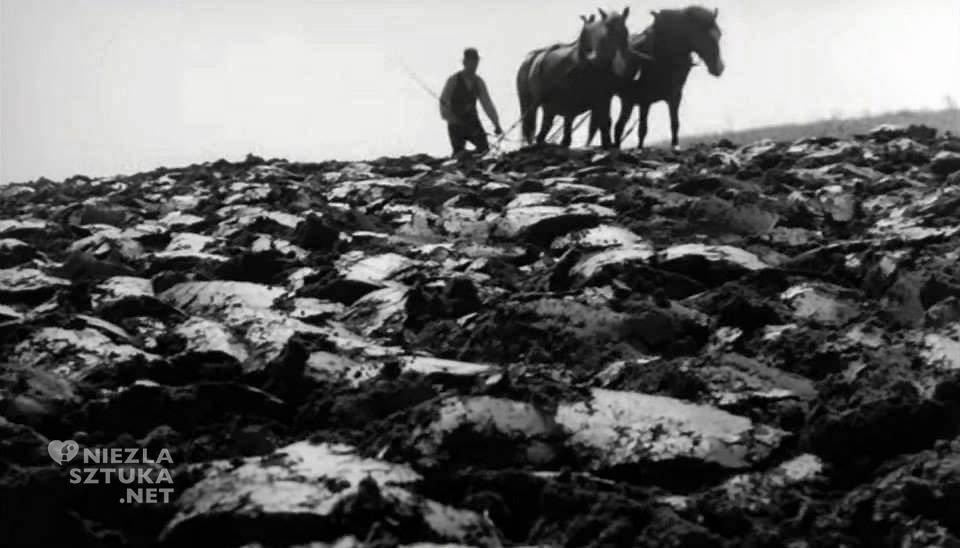 Kadr z filmu Popiół i diament | 1958, reż. Andrzej Wajda