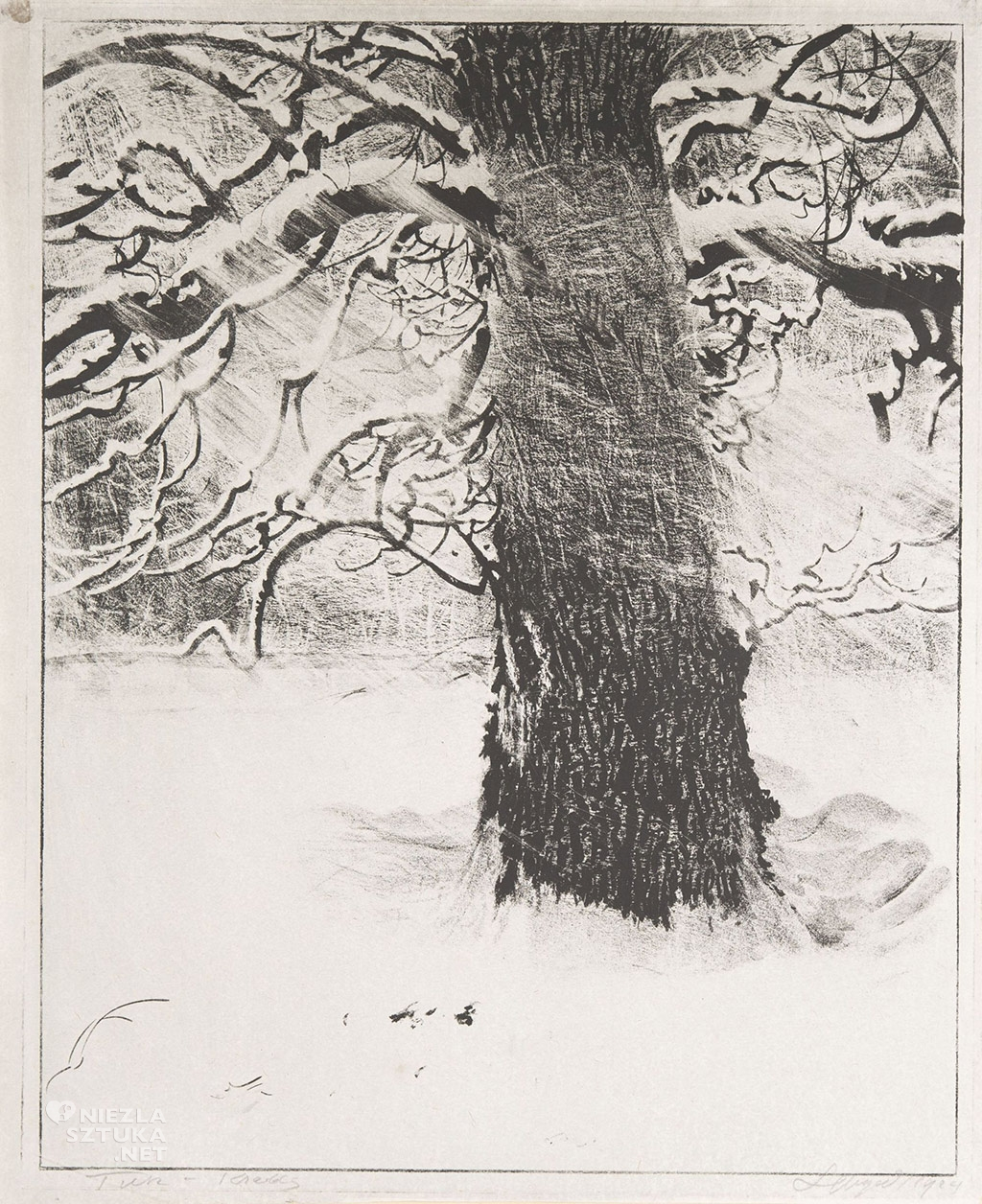 Leon Wyczółkowski, Dąb w śniegu,   1929, litografia, tusz, kreda, ze zbiorów Muzeum Górnośląskiego