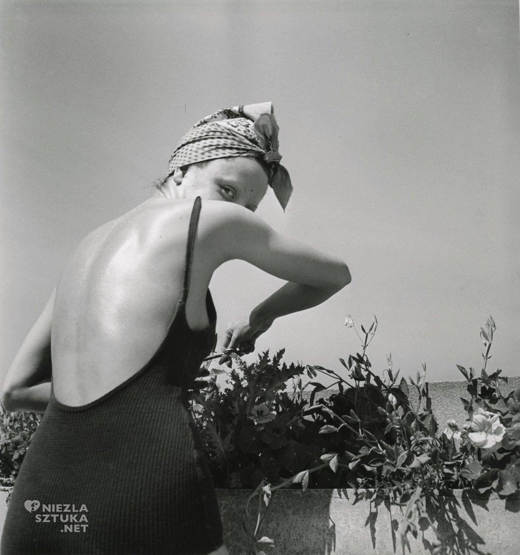 Coco na tarasie | 1938, fot. filmsnotdead.com