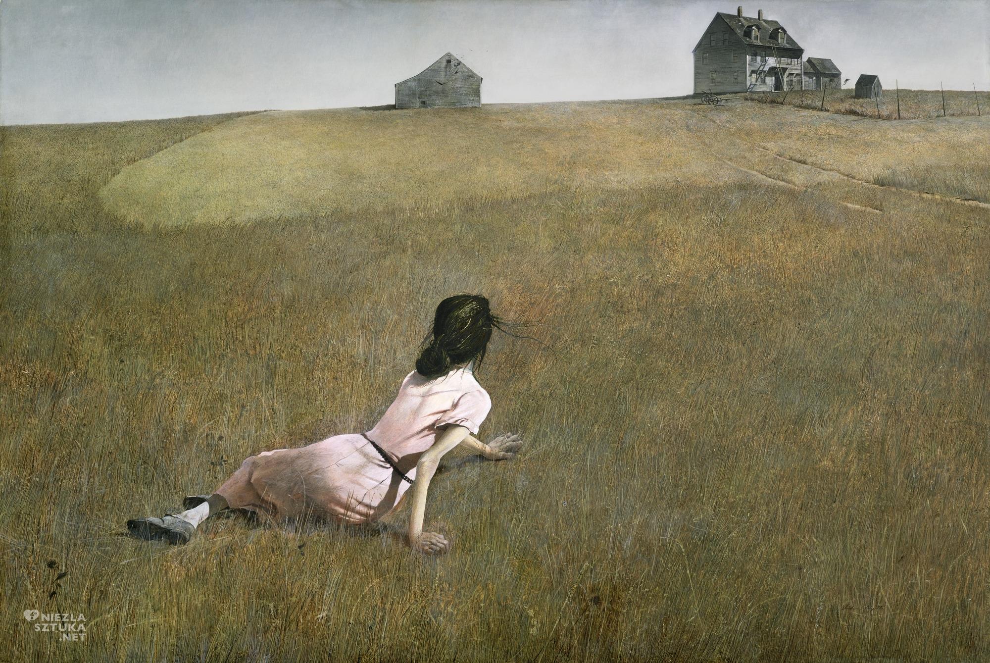 Andrew Wyeth Świat Christiny, Niezła sztuka
