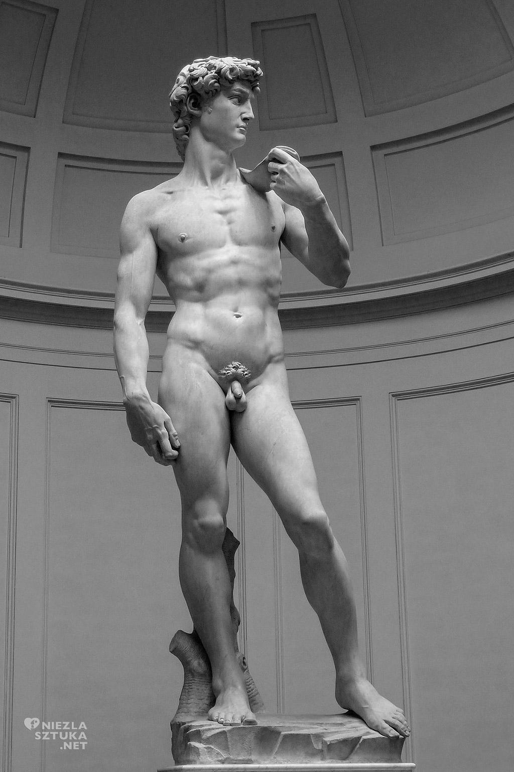 Michał Anioł rzeźba Dawid Florencja