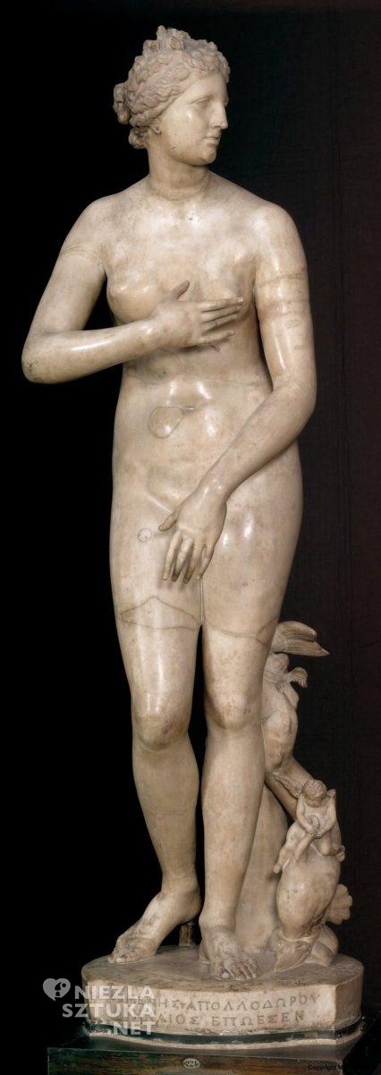 Wenus Medycejska, I wiek p.n.e., Galeria Uffizi, Florencja, Niezła sztuka