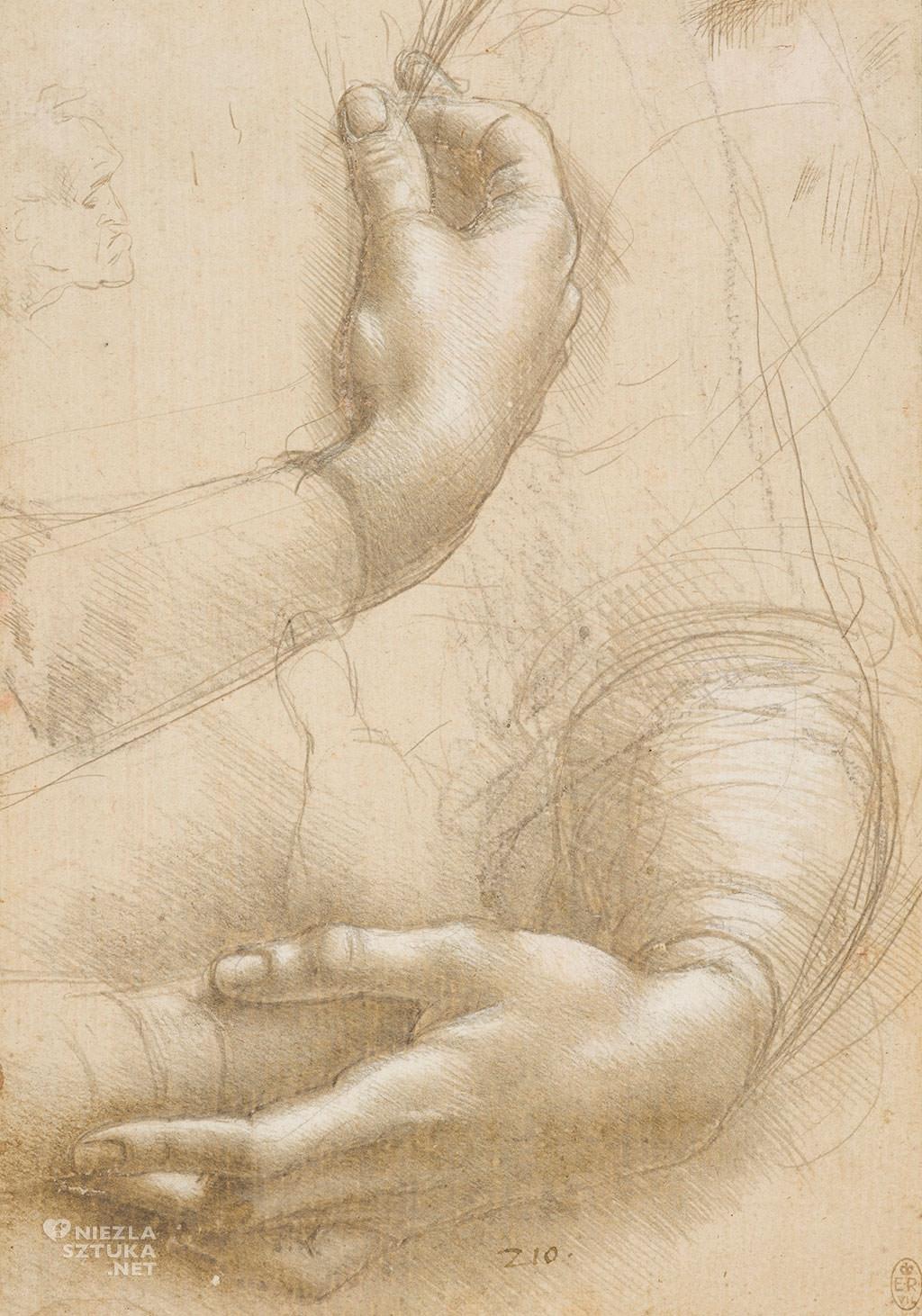 Leonardo da Vinci, Studium dłoni, szkic, sztuka włoska, Niezła sztuka