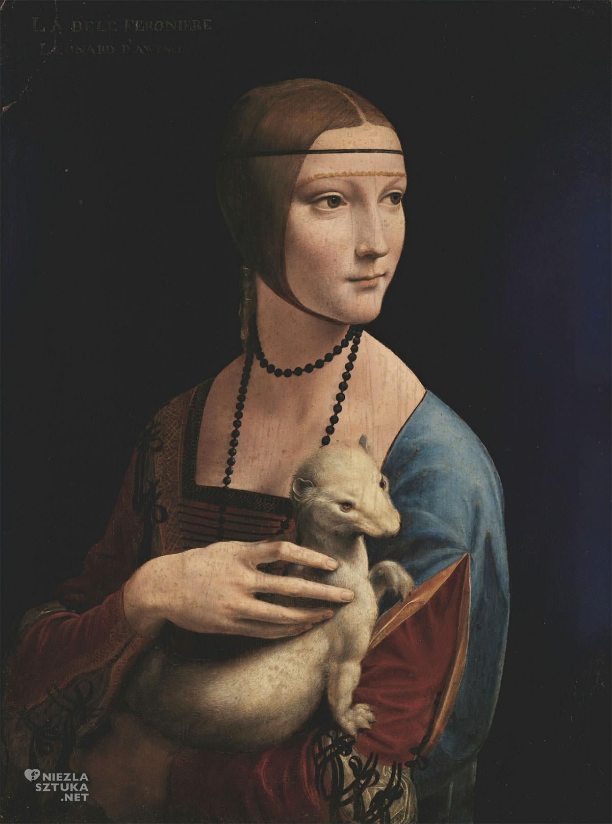 Leonardo da Vinci, Dama z gronostajem, Niezła sztuka
