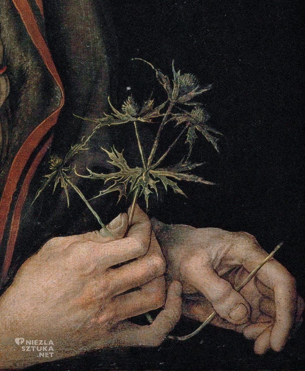 Albrecht Durer, Autoportret z kwiatem mikołajka, Niezła sztuka