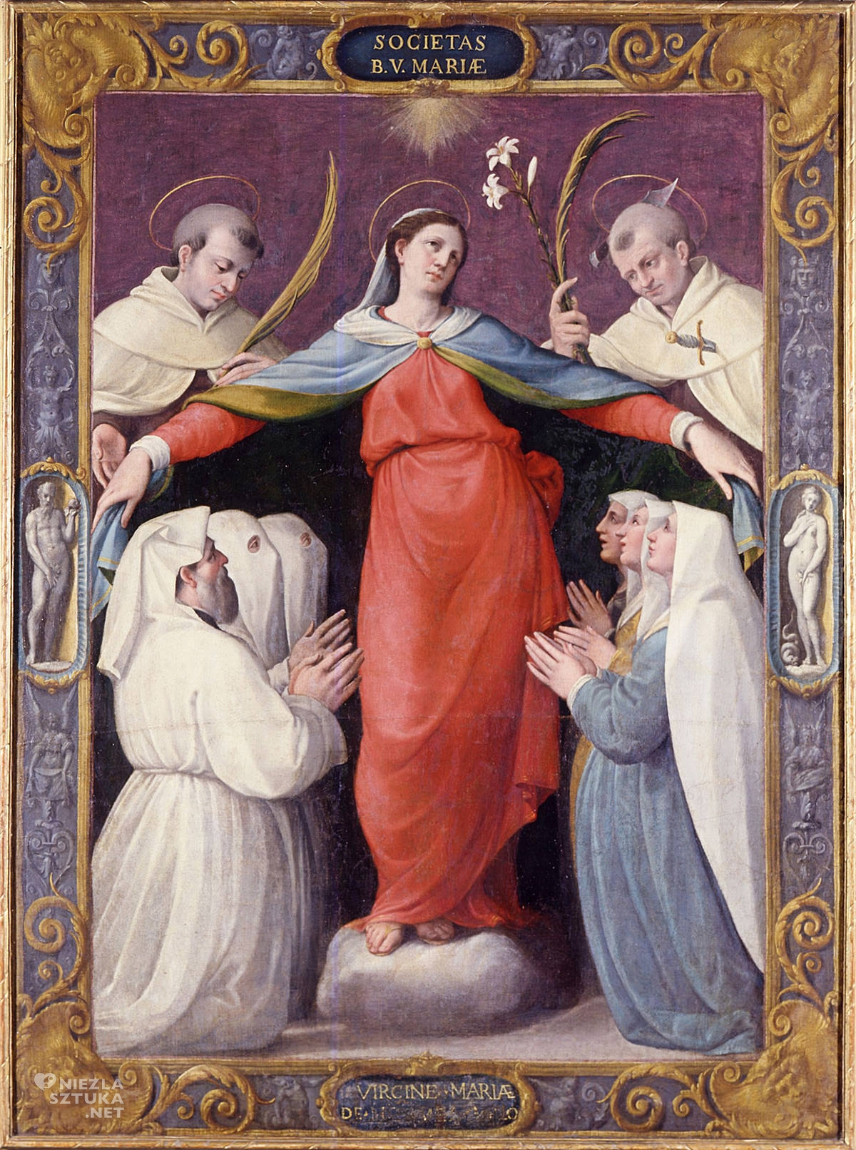 Jacopo Zanguidi detto Bertoja, Madonna della Misericordia, Niezła sztuka