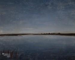 Józef Chełmoński, Noc gwiaździsta, Muzeum Narodowe w Krakowie, sztuka polska, malarstwo polskie, nokturn, Niezła sztuka