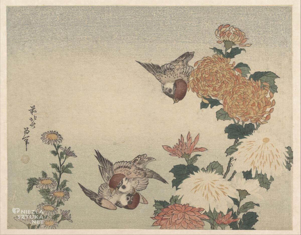 Katsushika Hokusai, wróble, chryzantemy, sztuka japońska, Niezła sztuka