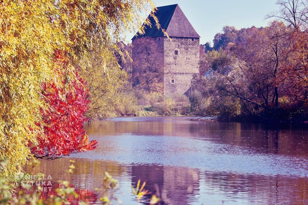 wieża w Siedlęcinie, malowidła ścienne, król Artur, legendy arturiańskie, Niezła sztuka