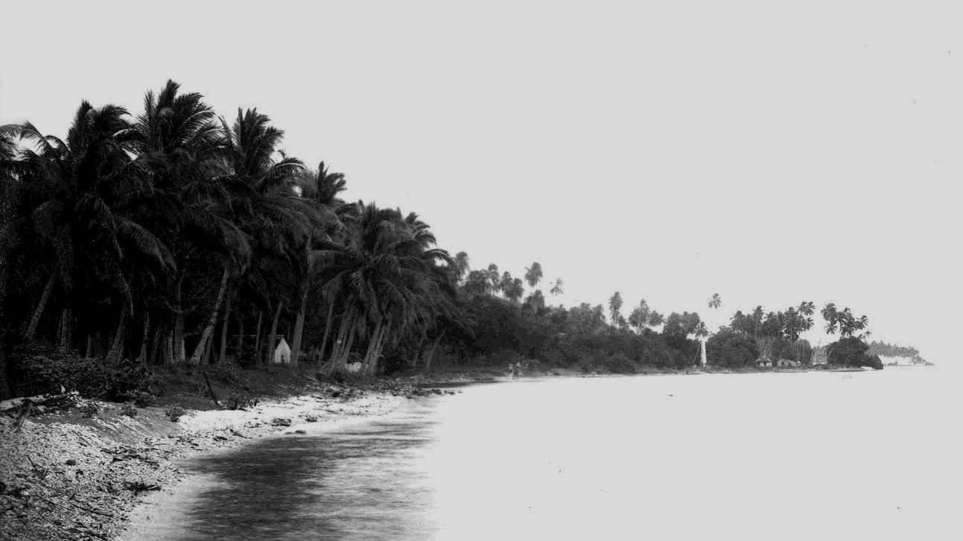 Tahiti, Henri Lemasson, Paul Gauguin, Niezła Sztuka