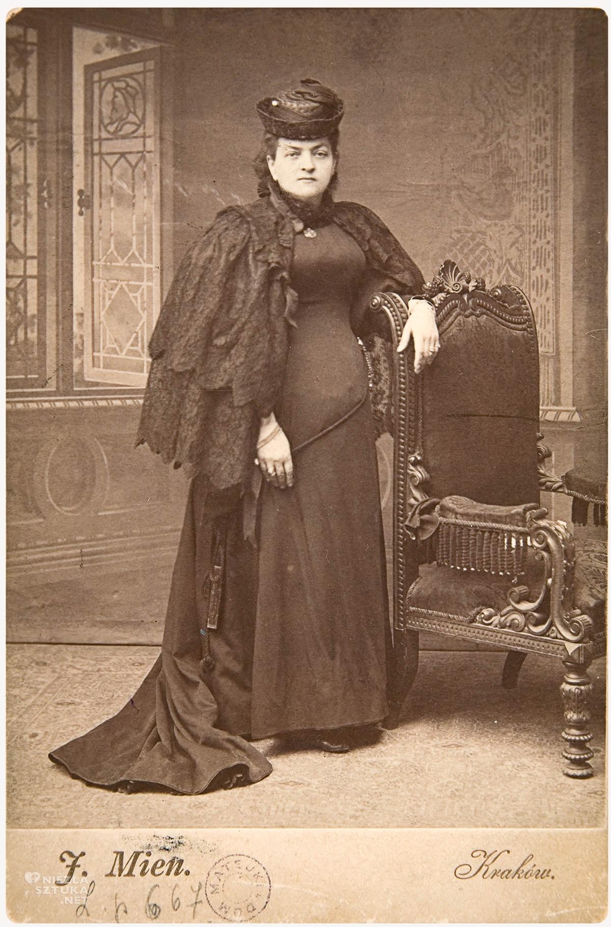 Teodora Matejko, Jan Matejko, żona, Muzeum Narodowe w Krakowie, Niezła sztuka