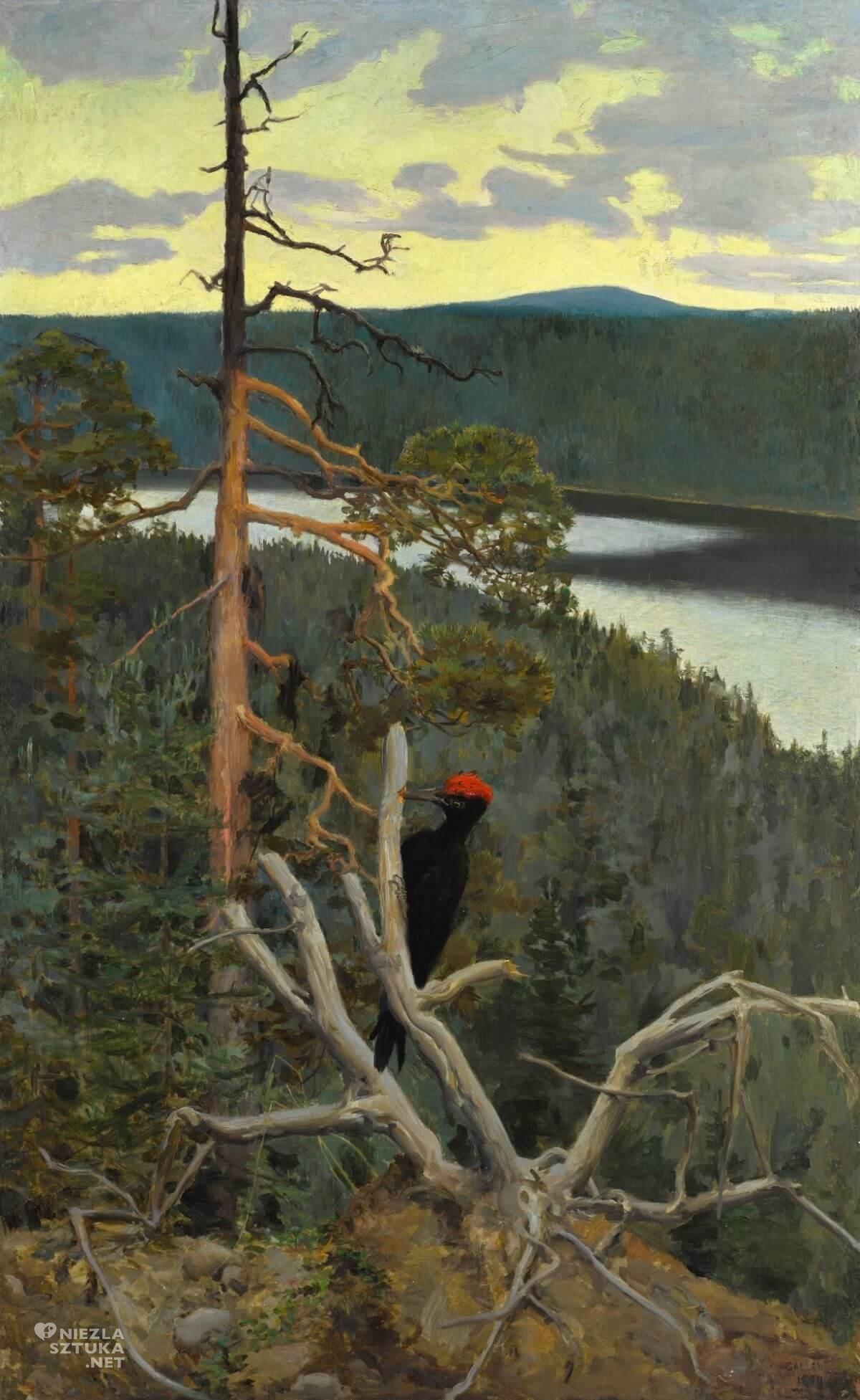 Akseli Gallen-Kallela, wielki czarny dzięcioł, sztuka skandynawska, Niezła sztuka