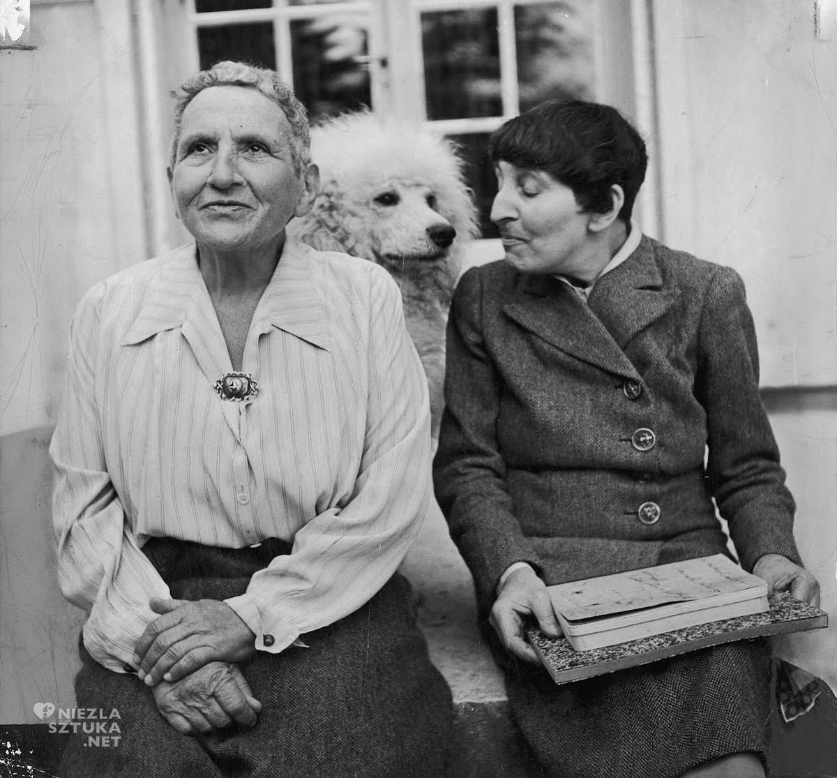Gertruda Stein, Pablo Picasso, Alice B. Toklas, Niezła Sztuka
