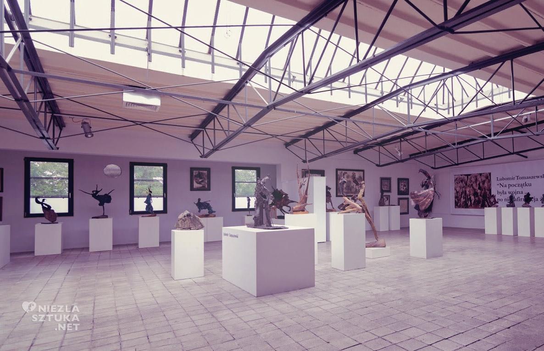 Galeria van Rij, Lubomir Tomaszewski, Niezła sztuka