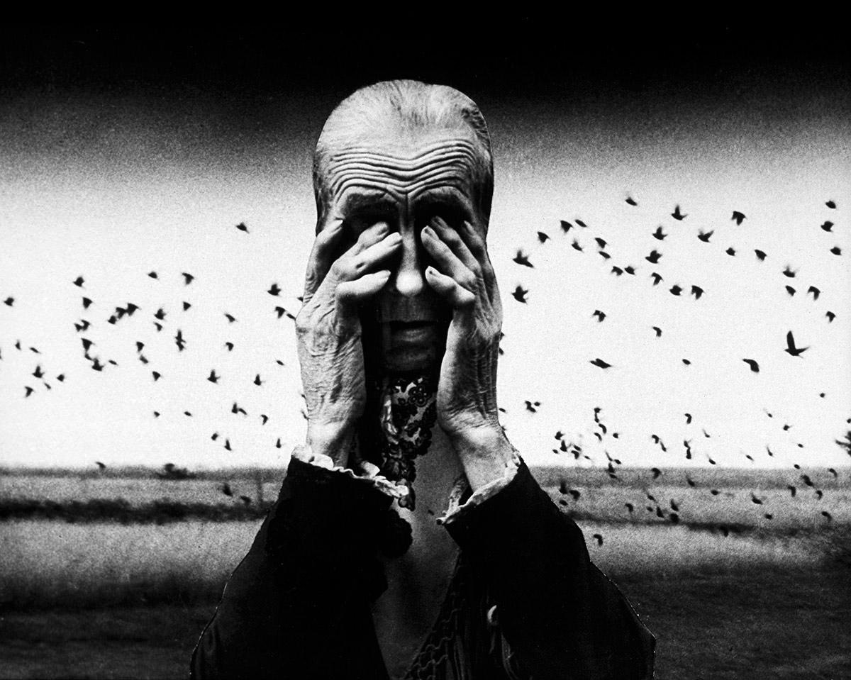 Zofia Rydet, Zagłada, Świat uczuć i wyobraźni, fotografia, Niezła Sztuka