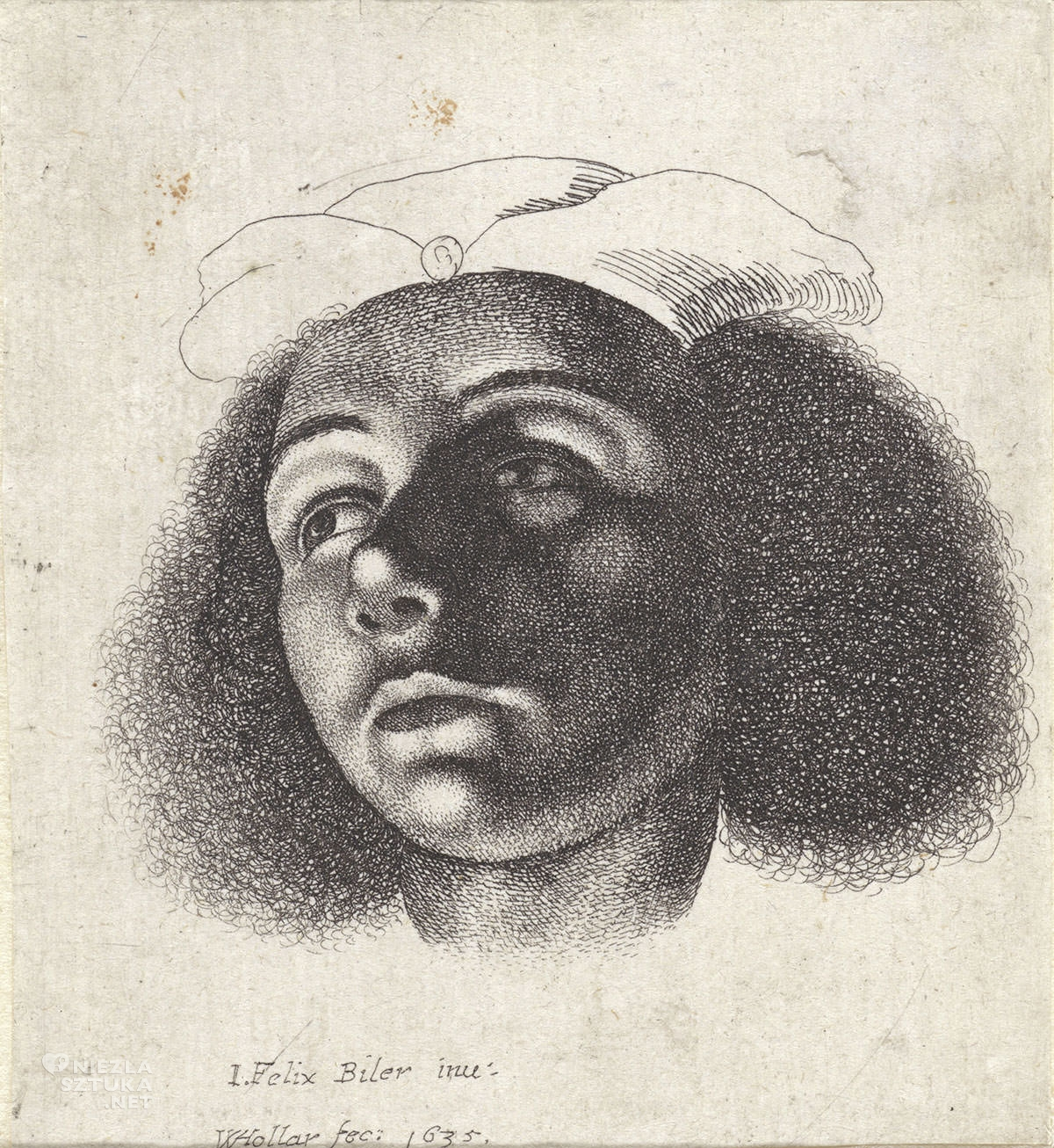Vaclav Hollar, Głowa chłopczyka z pięknie kręconymi włosami i w czapce, ilustracja, Niezła Sztuka