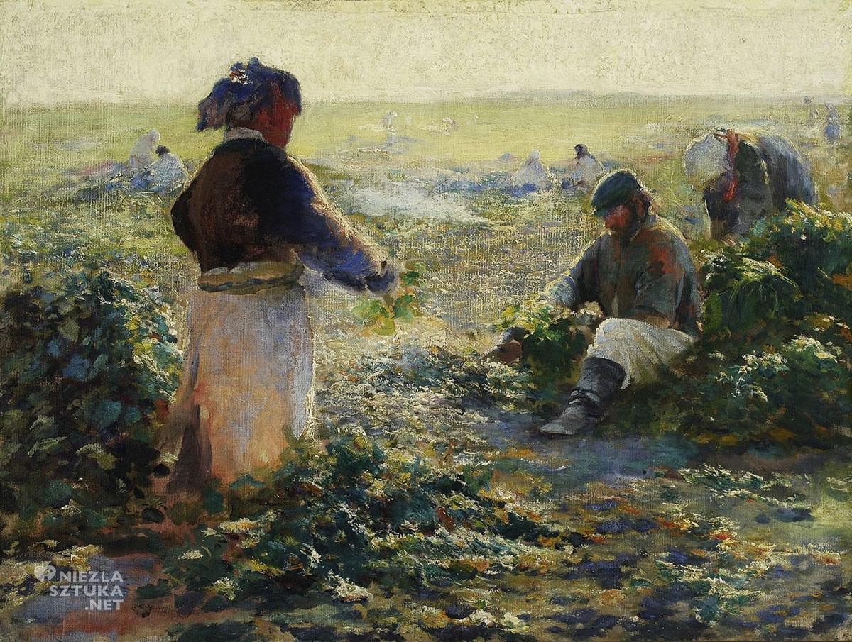 Leon Wyczółkowski, Kopanie buraków, jesień, Muzeum Narodowe w Warszawie, sztuka polska, Niezła sztuka