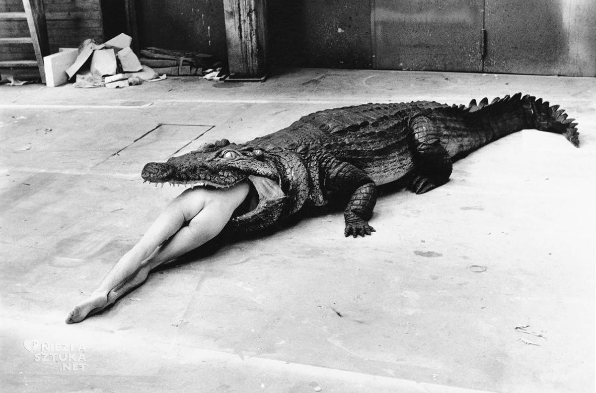 Helmut Newton, fotograf, kobiety, Niezła Sztuka