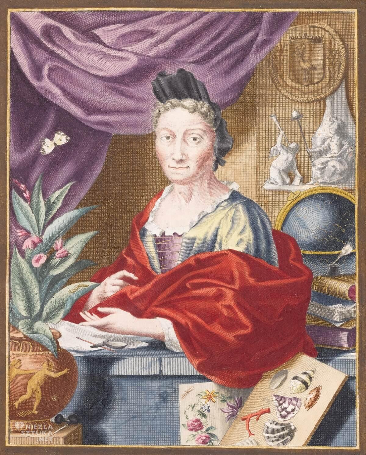 Jacobus Houbraken, Anna Maria Sibylla Merian, kobiety w sztuce, biologia, rysunki, Niezła Sztuka