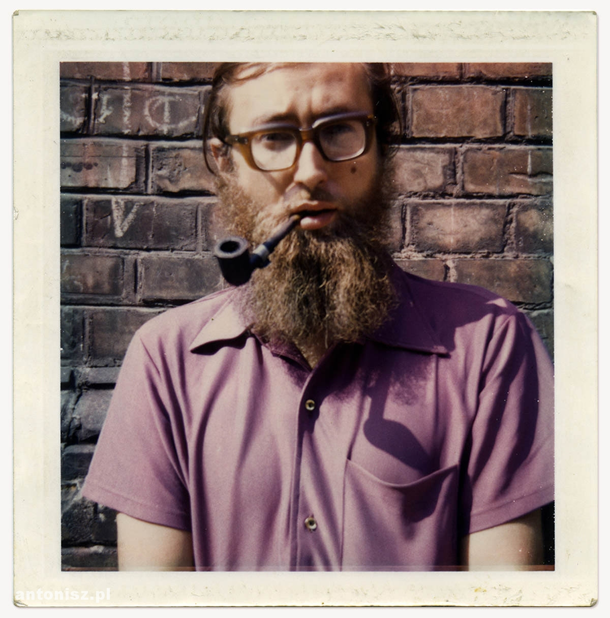 Julian Antonisz, autoportret, polaroid, Niezła sztuka