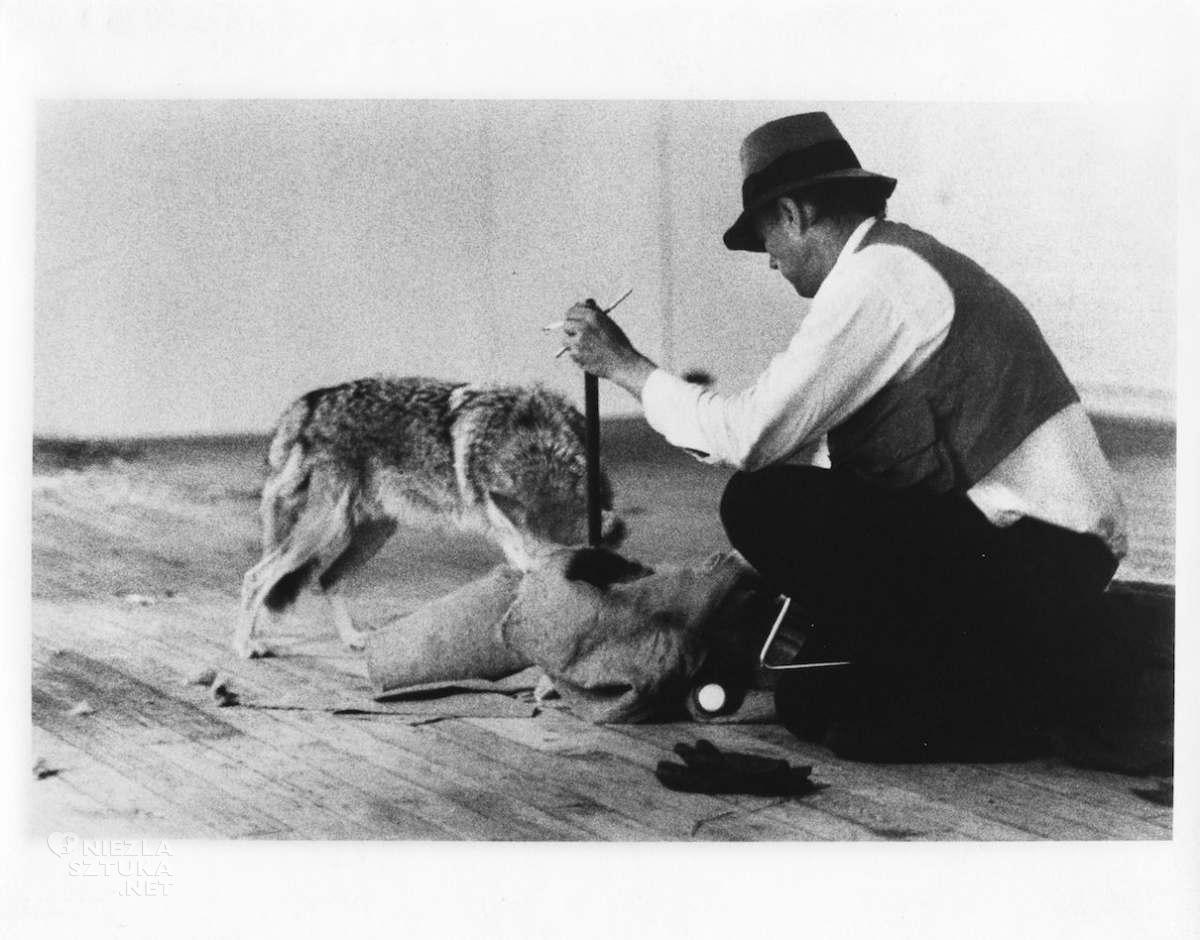 Joseph Beuys, performance, I like America and America likes Me, niezła sztuka