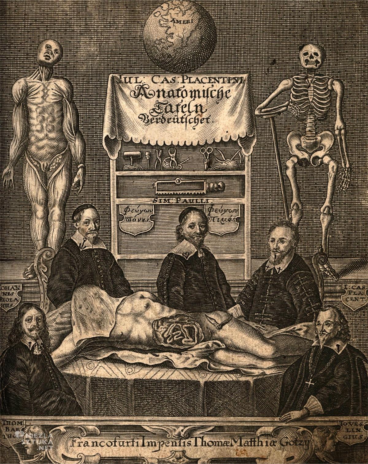 Giulio Cesare, anatomia, sztuka niezła sztuka