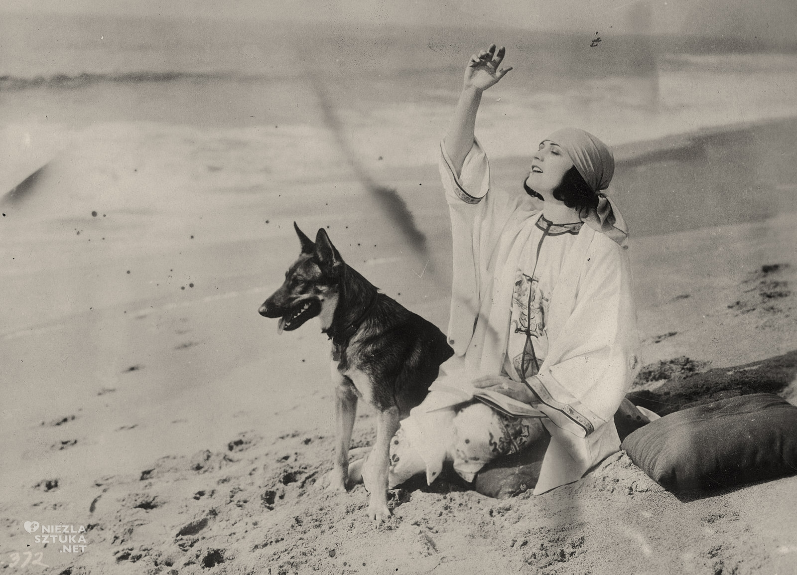 Pola Negri, fotografia, aktorka, kino, pies, Niezła Sztuka
