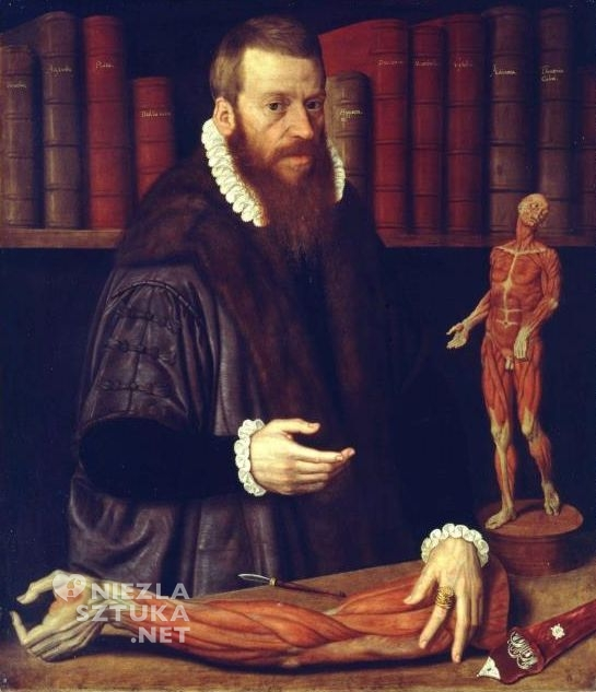 Volcher Coiter, portret lekarza, anatom, uczony, niezła sztuka
