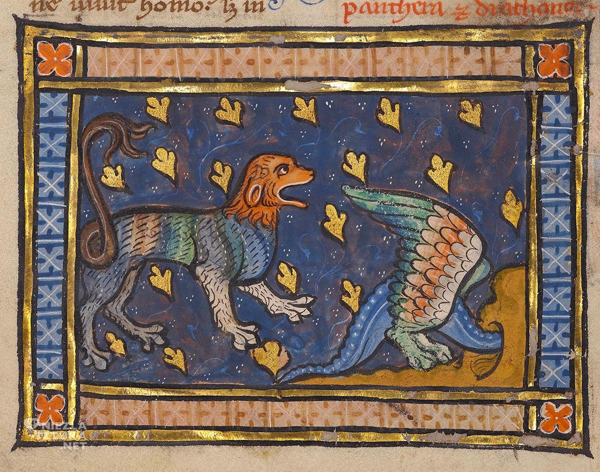Bestariusz, średniowiecze, zwierzęta, Niezła Sztuka