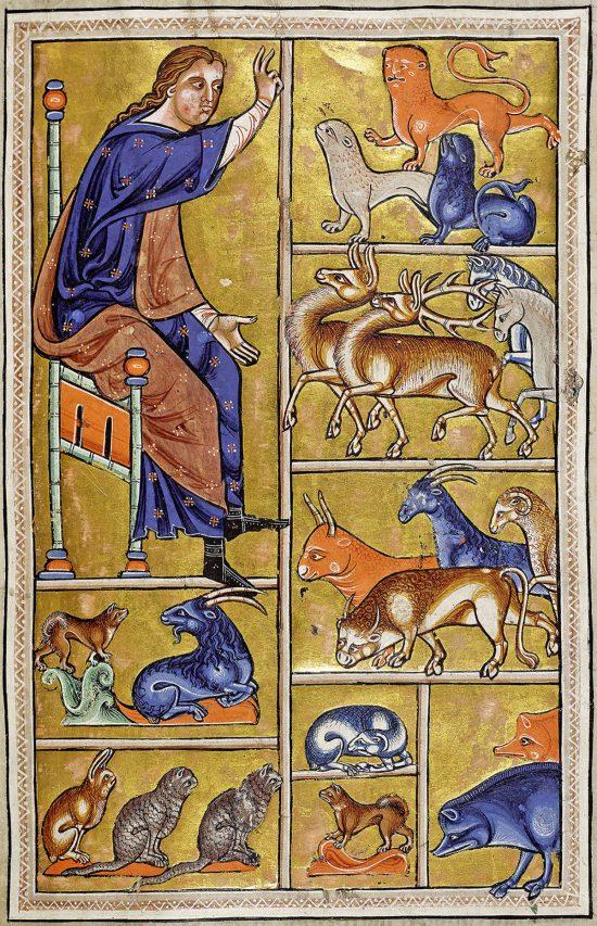 Bestiariusz z Aberdeen, średniowiecze, ilustracje, Niezła Sztuka