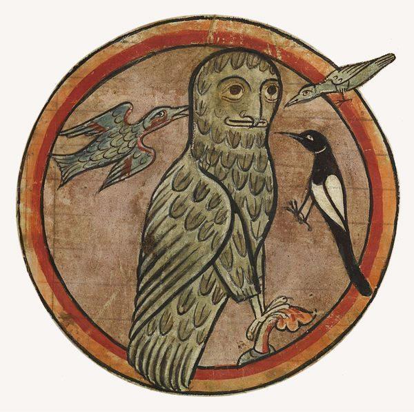 Sowa, Bestiariusz, średniowiecze, zwierzęta, Niezła Sztuka