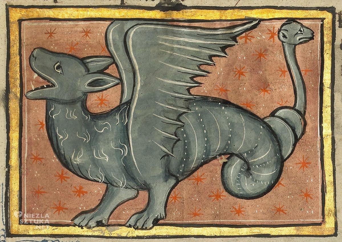 A winged dragon, ilustracje, bestiariusz, średniowiecze, Niezła Sztuka