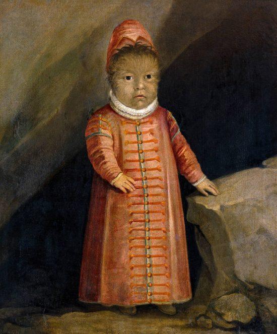 Portret syna Petrusa Gonsalvusa, XVI wiek, Zamek Ambras, Niezła Sztuka