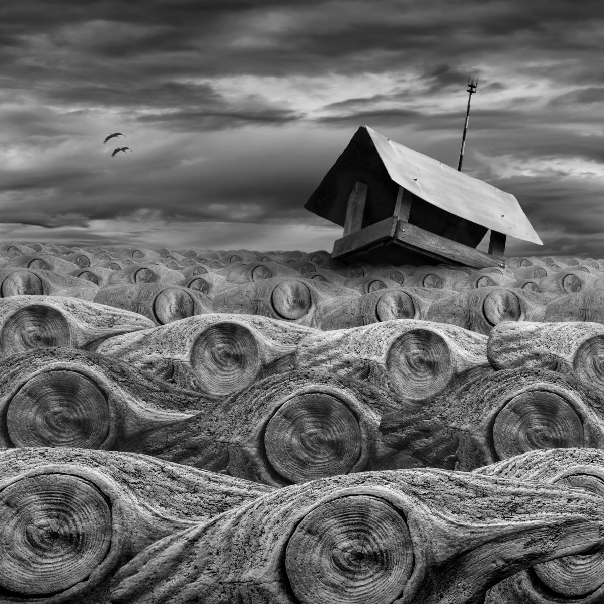 Dariusz Klimczak fotograf, fotografia, surrealizm, fotomontaż, fotografia kreatywna, niezła sztuka