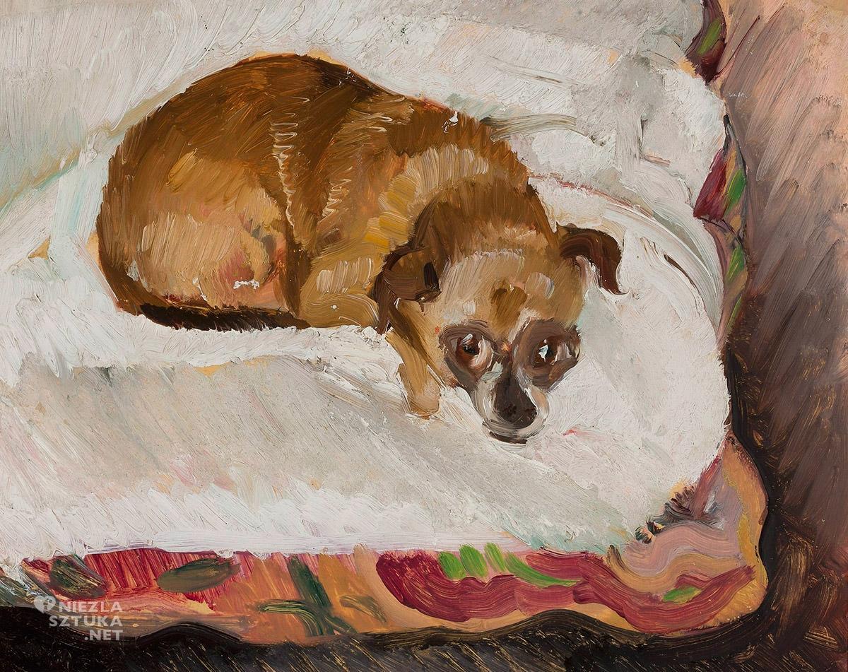 Zygmunt Waliszewski, pies, niezła sztuka