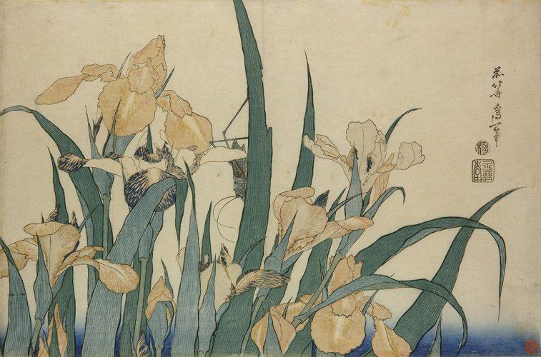 Hokusai, sztuka japońska, Niezła Sztuka