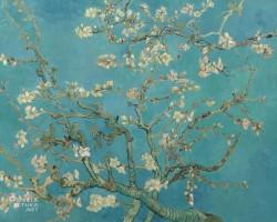 Vincent van Gogh, Kwitnący migdałowiec, japonizm, Niezła Sztuka